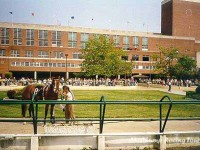 Atlantic City Racecourse