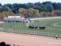 Arlington Park, Arlington Million Day, 2004