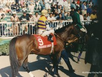 Arlington Park, Arlington Million Weekend 1994