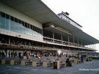 The Mcchump Gallery Of Horse Racetrack Photos The